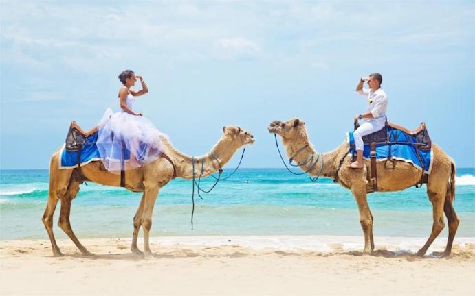 Opciones originales para llegar a tu boda www.weddingpassion.es via aliexpress.com