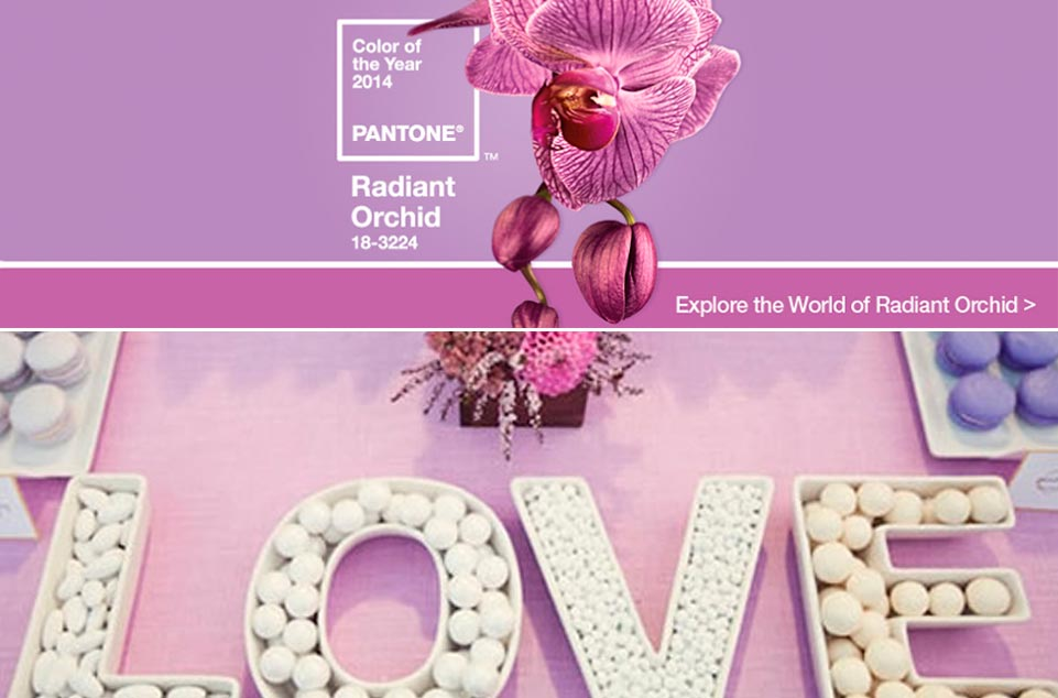 Radiant-Orchid-boda-961x634