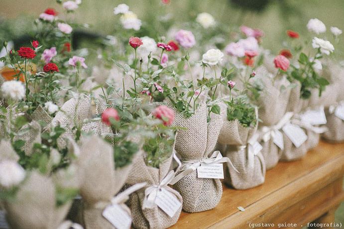 regalos-de-boda-mini-plantas-691x460