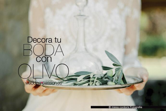 olivos decorativos